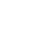 the bear the fish the root and the berry